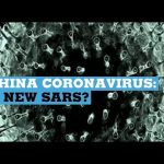 China coronavirus: A New SARS?